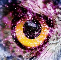 UCHUSENTAI:NOIZ ライカ 宇宙限定盤